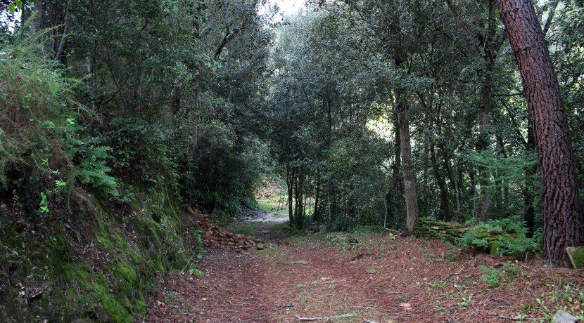 CaminoPrivado